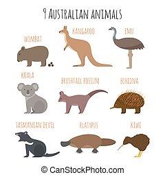 vector, australiano, conjunto, animales, icons.