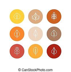 Vector autumn leaves icons set, fall tree colorful foliage