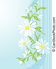 vector background with camomiles