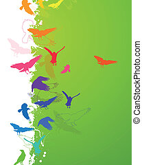 Vector Background with Colorful Birds