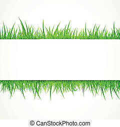 Vector Background with Grass