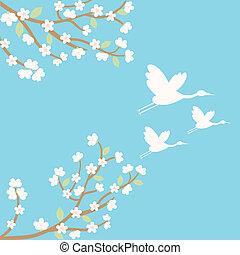 background with sakura and cranes