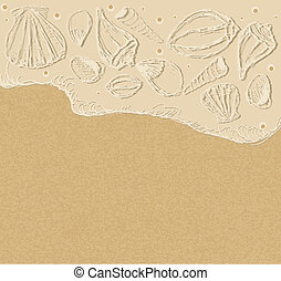 vector background with sea shells