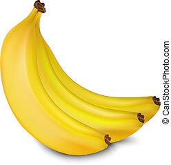 Vector bananas - Three yellow juicy bananas isolated on ...
