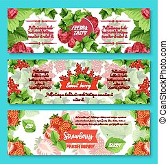 Vector banners for fresh berries and fruits