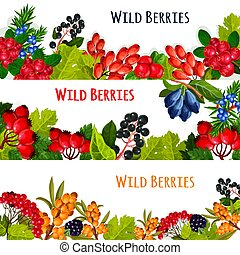 Vector banners set of wild berries and ruits