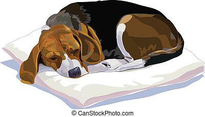 Vector-Beagle