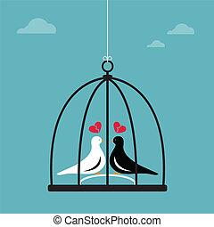vector, beeld, cage., twee vogels