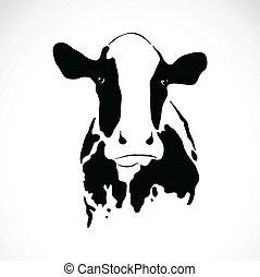 vector, beeld, van, een, koe