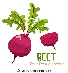 Vector beet isolated on white background.Vegetable illustration for farm market menu. Healthy food design poster. Cartoon style vector illustration