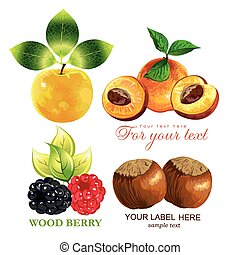 vector, besjes, set, vruchten
