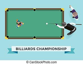 Vector billiard game champion.