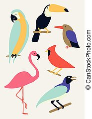 Vector bird illustration