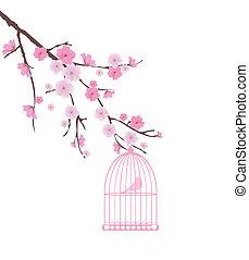 vector bird in a cage