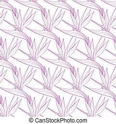 Vector Birds of Paradise Flowers Seamless Pattern