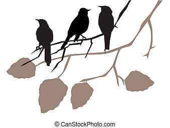 birds - vector birds on branches
