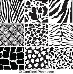 animal skin - vector black and white animal skin