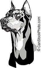Dobermann Pinscher head in tattoo style. - Vector black and...