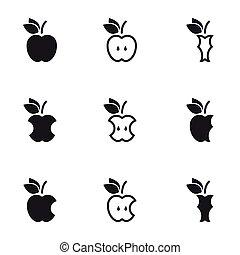 Vector black apple, icon set