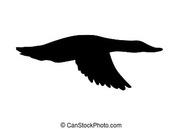 Vector black duck silhouette