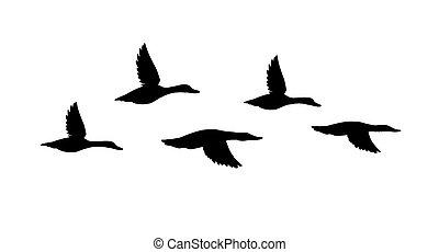 Vector black flock of flying duck silhouette