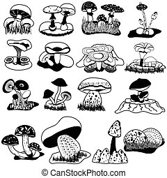 vector black mushrooms