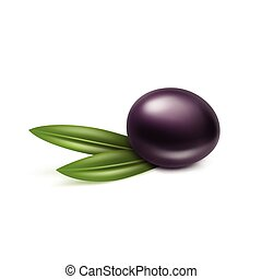 Vector Black Olive with Leaves Isolated on White Background