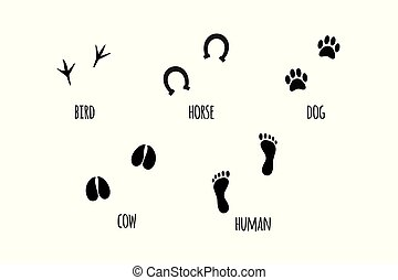 Vector black set of animal silhouettes foot print