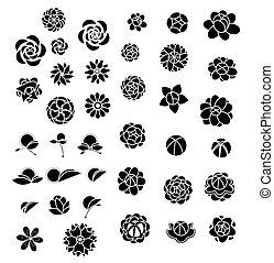 vector, bloem, verzameling, pictogram