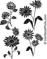 vector, bloemen, 20