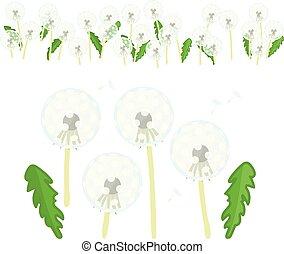 vector, bloemen, set, paardenbloem