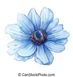 Vector blue anemone in watercolor style isolated on white background. Cutout flower for background, texture, pattern.