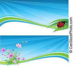 blue spring banner