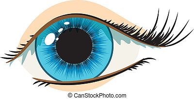 vector blue woman's eye on a white background