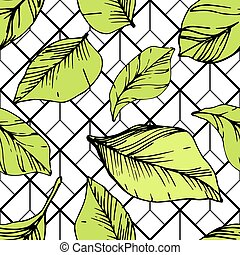 Vector Blueberry green and black engraved ink art. Green leaves. Seamless background pattern.