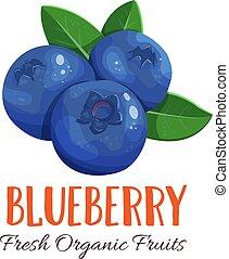Vector blueberry illustration - Vector blueberry. Fruit...