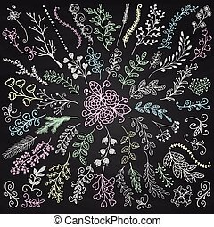 Vector Chalk Drawing Hand Sketched Rustic Floral Doodle Decorative Branches, Swirls, Design Elements. Hand Drawing Vector Illustration. Discrete Brushes. Board Menu Texture.