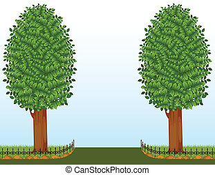 vector, bomen, omheining