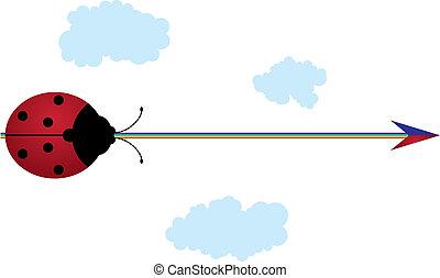 ladybird, rainbow and arrow