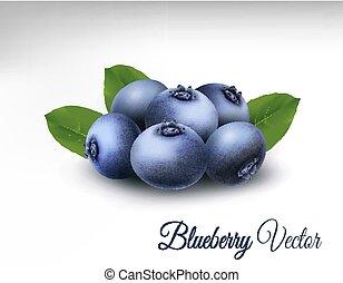 vector, bosbes, leaves.