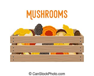 Vector box with mushrooms, grocery basket with garden products