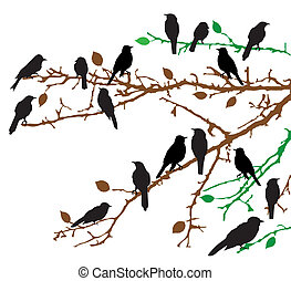 branches - vector branches with birds