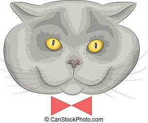 Vector British cat.