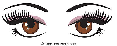 brown eyes - vector brown eyes with make up