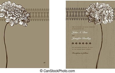 Vector Brown Floral Frame and Background