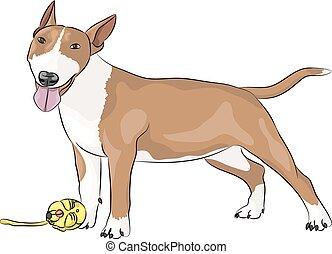 Vector Bull Terrier dog.