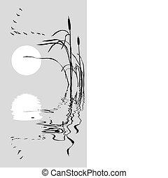 vector, bulrush, tekening, geese, vlucht