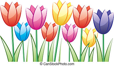 bunch of colorful tulips - vector bunch of colorful tulips