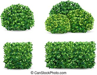 vector bush set