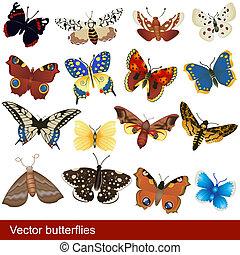 vector butterflies